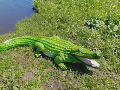 Крокодил - фото 4805