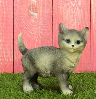 Котенок стоячий - фото 5158