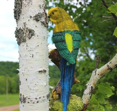 Попугай на ветке - фото 5170