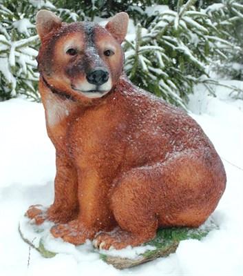 Медведь большой - фото 5316