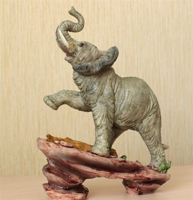 Слон на камне - фото 5336