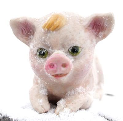 Свинка лежачая малая - фото 5358
