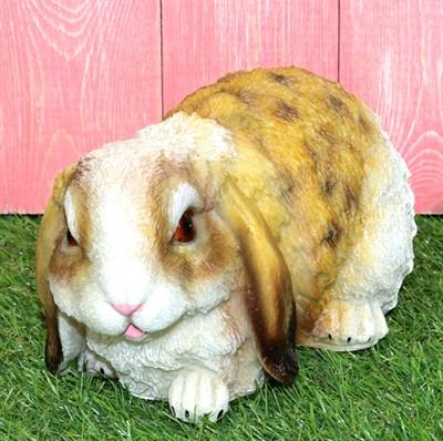 Кролик - фото 5366