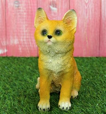 Котенок сидячий рыжий - фото 5367