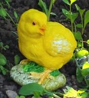 Цыпленок-1 (повернутая голова)
