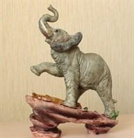 Слон на камне