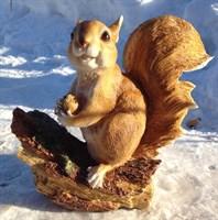 Белка на ветке с орехом